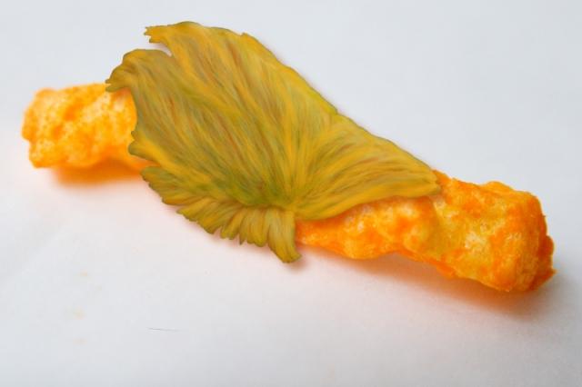 fuzzy-cheeto